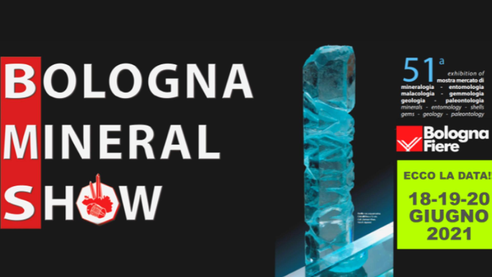 Read more about the article Salon de Bologne (ITA): 06-2021