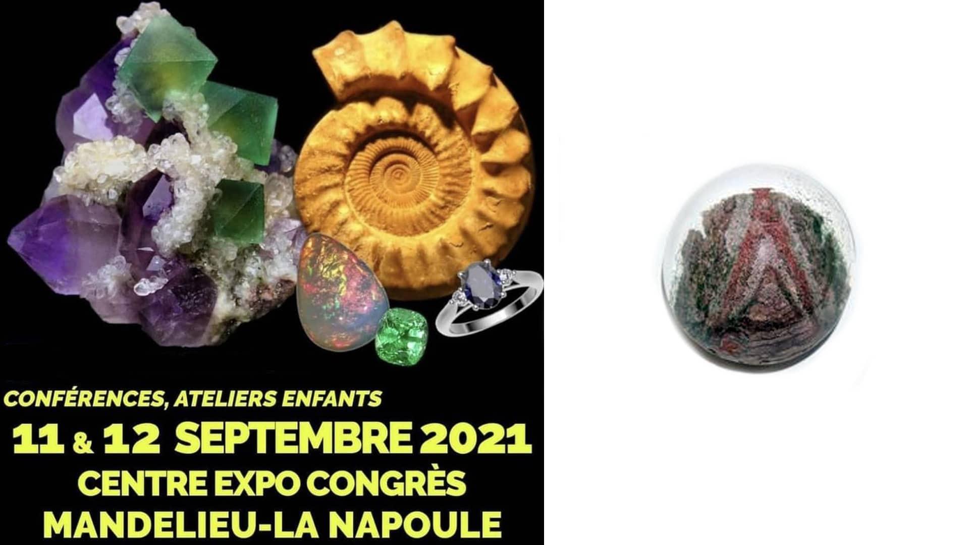Read more about the article Salon de Mandelieu: 09-2021